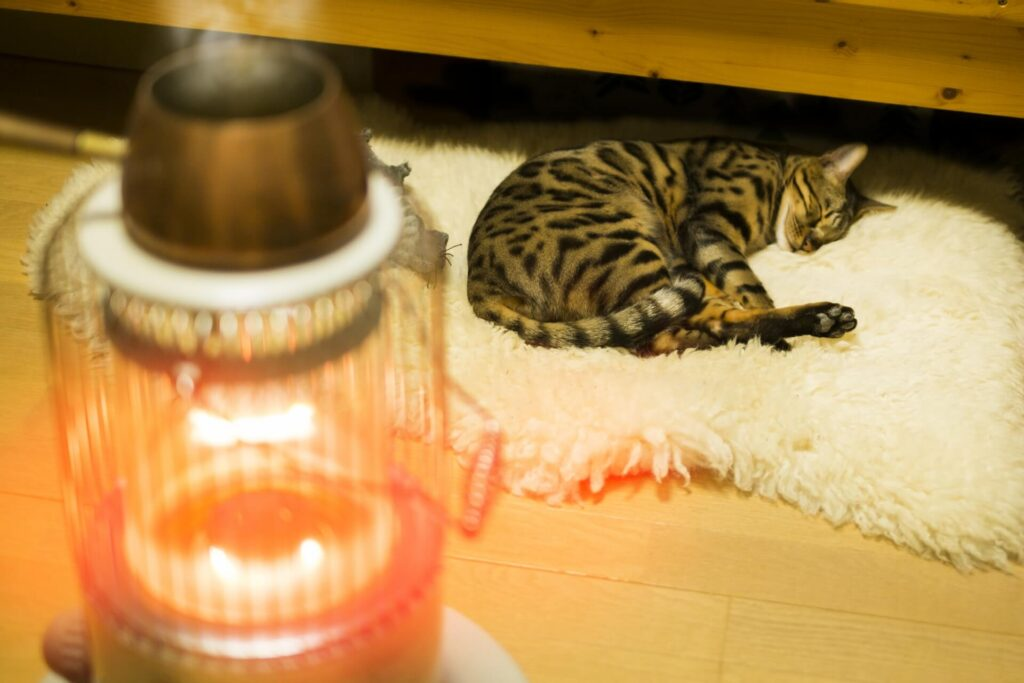 用途別のおすすめ暖房器具
